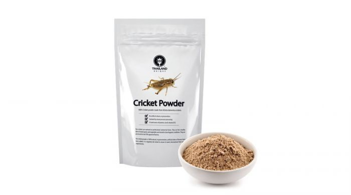Can consumption of cricket powder impact gut microbiota?