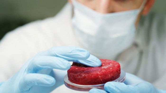 A new edible film to produce in vitro meat
