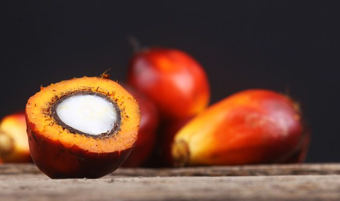 RSPO certified stearates